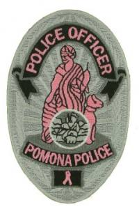 Pink Police Badge patch