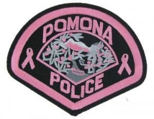 Pink Police Embroidered patch